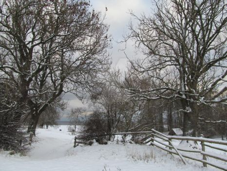 Just Winter in Melsted3