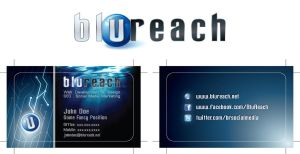 Bluereach Logo + Business Card by amade