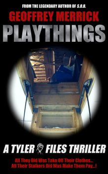 Playthings Cover by geoffmerrick