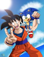 Goku And Sonic by boy-wolf