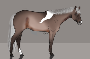 Blue's Blue Willow (have now short fjord manes !) by BlueLakeRanch