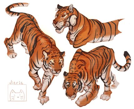 Tiger(concept) by Nieris