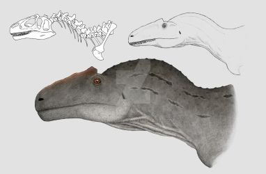 Excess tissue: Allosaurus by Pachyornis