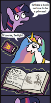 How To Be A Princess by LeidenPierce