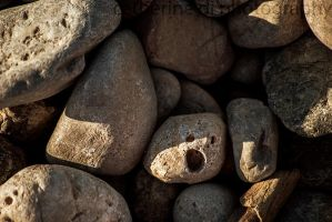 Mr Rock is kinda stoned by Catherine-Di