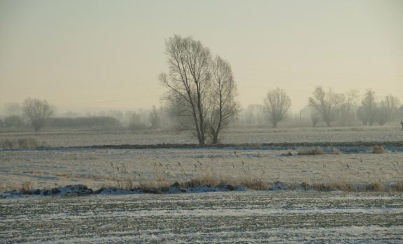 Winter Landscape by BW-Neelly