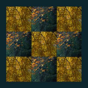 Autumn patchwork by SplitEnsds