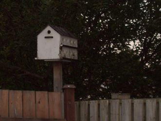 Bird House by morbidxstock