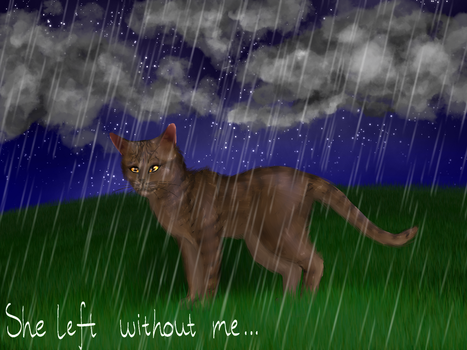 Tigerheart's Shadow- 'She left without me...' by Xx-Half-M00n-xX