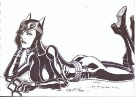 Catwoman  by KyoungInKim
