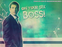 Wallpaper - Anthony DiNozzo by vivovivo