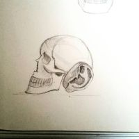 skull ear by desenez88