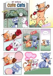 Cute Cats Page by umimarina
