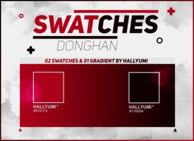 SWATCHES: DongHan by Hallyumi