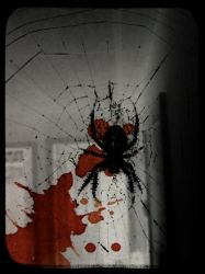 Bloody Spider TTV by s-c-w