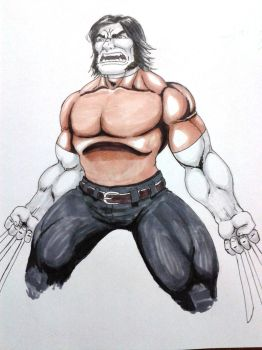 Wolverine marker by lunfiti