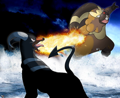 Bibarel Vs. Houndoom