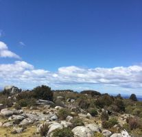 Tasmanian Blue Tiers - Unnamed Peak by MK-FouR