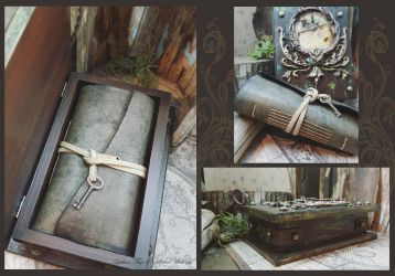 Treasured - A Box and A Book 2 by LuthienThye