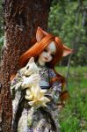 Spring and foxes 006 by Irik77