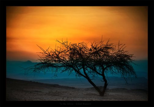 To Be Alive by gilad