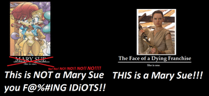 Sally is NOT a Mary Sue! Rey is a Mary Sue! by ShanahaT