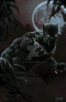 Black Panther by 1314