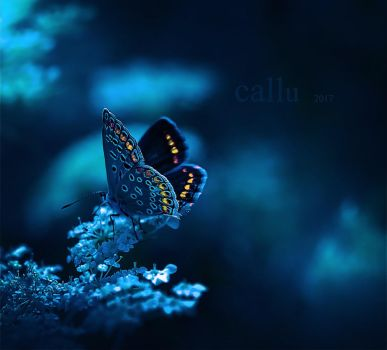 The Big Blue II by Callu