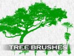 Tree Brushes by PhotoshopdesaiN