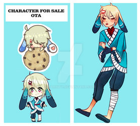 Character for Sale [OTA CLOSED] by Daroity
