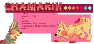 Chamarin ref. sheet by consciences