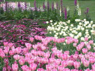 Longwood Gardens: 55 by jr----fave-resources