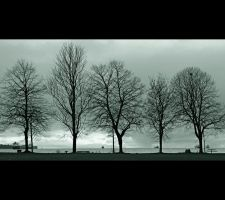 The Shapes of Trees II by Val-Faustino