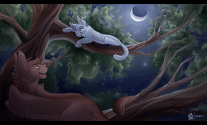 Climbing Higher by shadowily