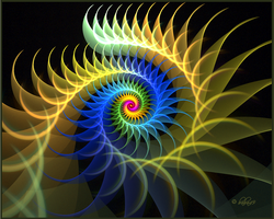 Dynamic of Colors by baba49