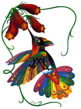 Oaxacan Hummingbird by JillianLambertArt