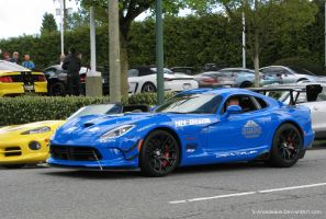Blue ACR by S-Amadeaus