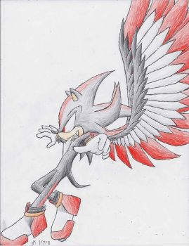 Shadow the Hedgehawk by VibrantEchoes