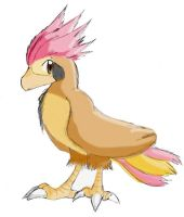 Chester the Pidgeotto