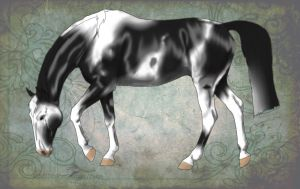Nevicar Warmblood Design 1 by HotrodsImpulse