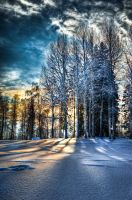 February afternoon by valkeeja