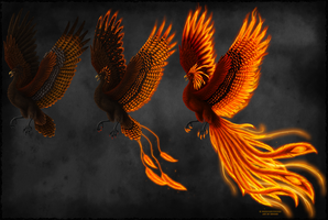 Phoenix Transformations by Sidonie