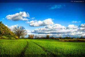 The After Trail . . . by T7-Productions