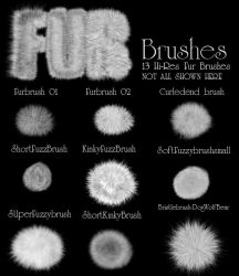 FurBrushes by suztv