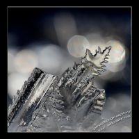 Ice  by albatros1