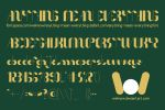 Anything Mean Everything font by weknow