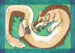 Contorted Sylphoid ACEO by Bear-hybrid