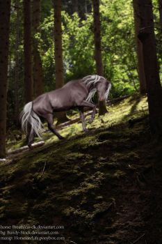 Forest Horse by Black-Lotus-Designs