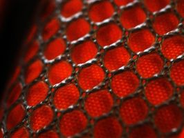 inner mesh by awjay
