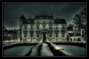 Palace in Teresin by Riffo